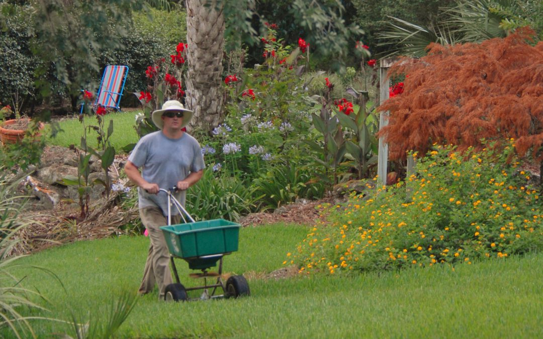 Video Feature: Home Lawn Fertilization
