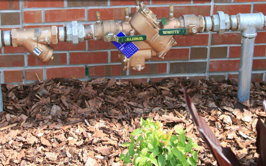 Backflow Preventers: An Important Link Between Gardeners and the Potable Water Supply