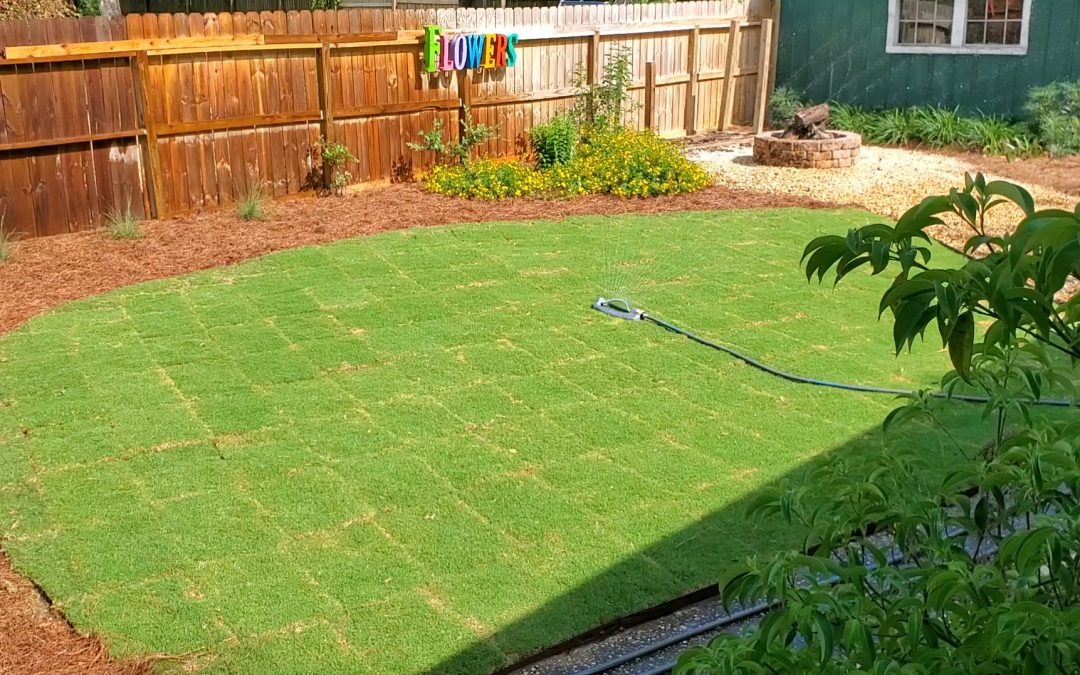 Installing Sod?  Remember These Ten Tips!