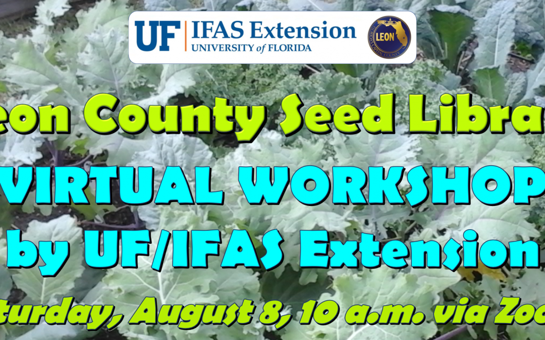 Leon County's Seed Library Program Continues On