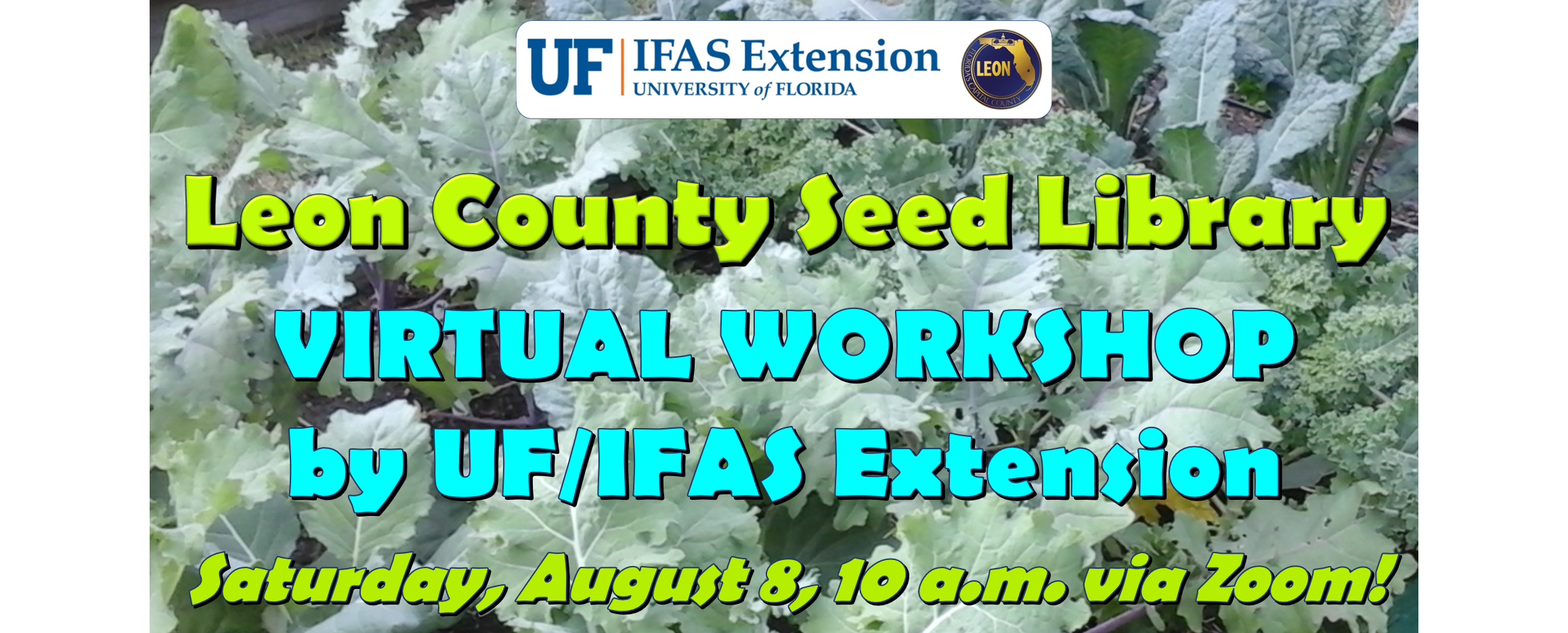 Join us via Zoom on Saturday, August 8, for our Leon County Seed Library Virtual Workshop. Graphic by Molly Jameson.