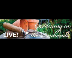 Gardening in the Panhandle logo