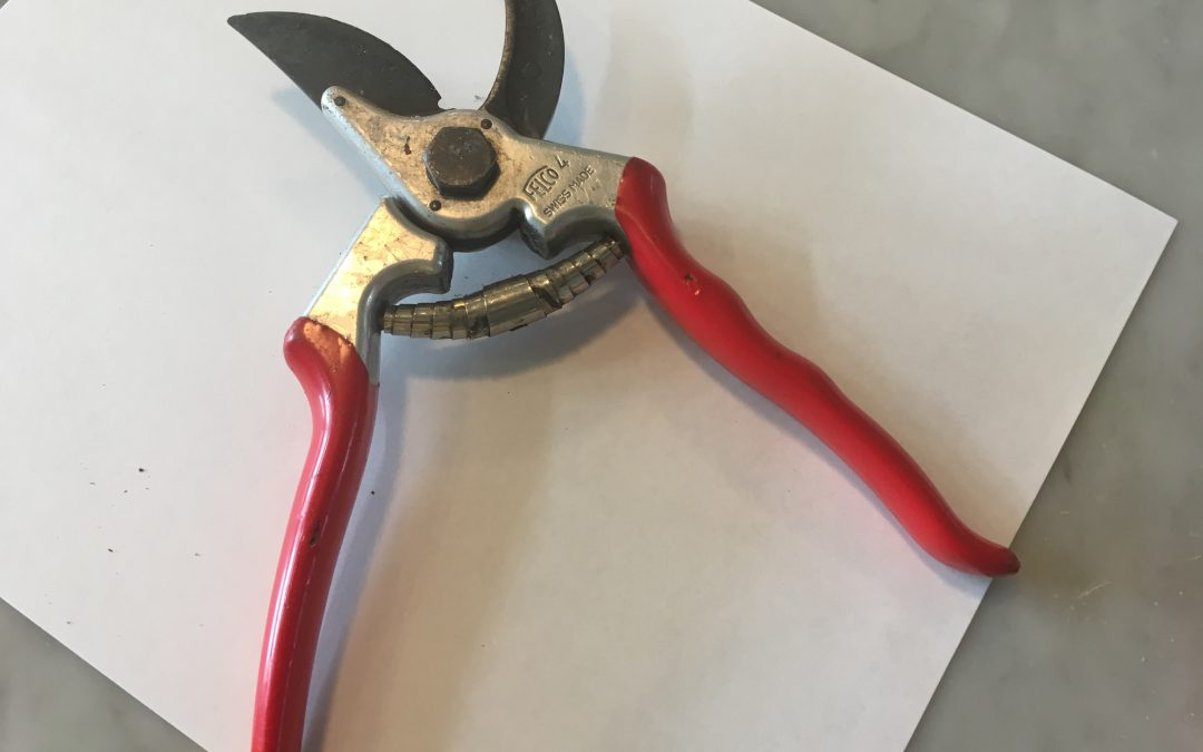 Upgrade Your Gardening with Quality Pruners!