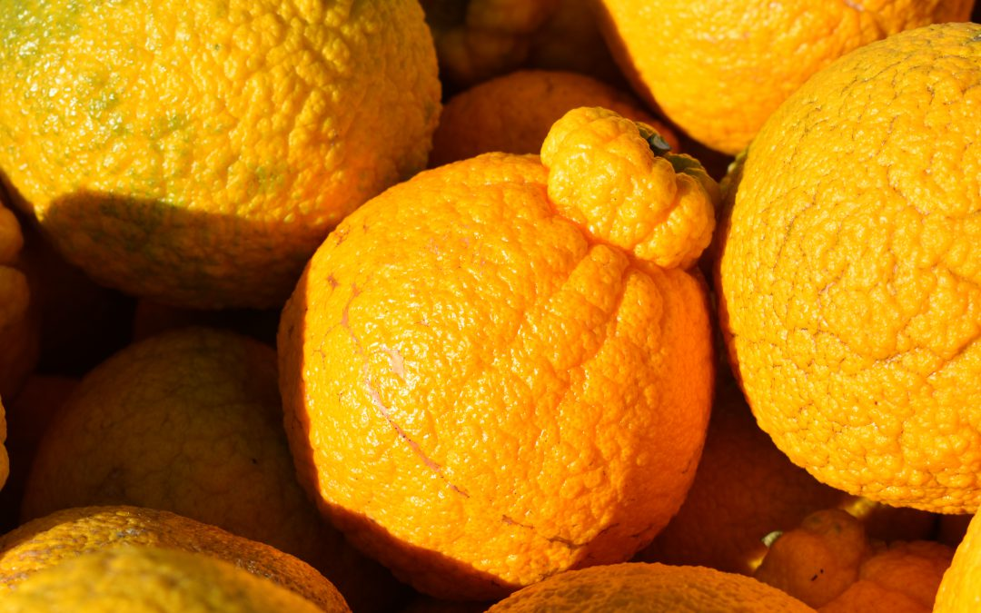 Shiranui Mandarin: Ugly Fruit, Great Flavor