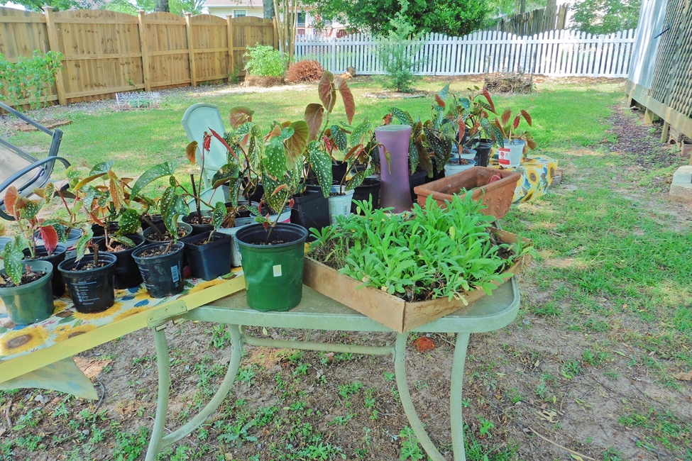 propagation table