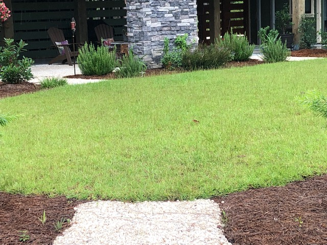 Reducing Your Lawn Size Options
