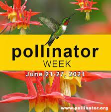 National Pollinator Week June 21-27, 2021