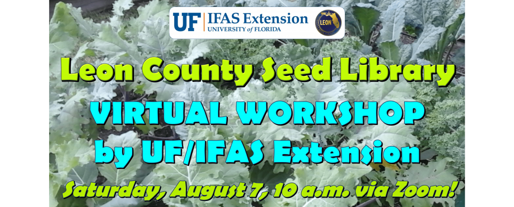 Join us via Zoom on Saturday, August 7, for our Leon County Seed Library Virtual Workshop. Graphic by Molly Jameson.