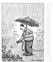 watering in the rain