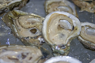 "Harvesting Safer Oysters – ""From Bay to Table"""