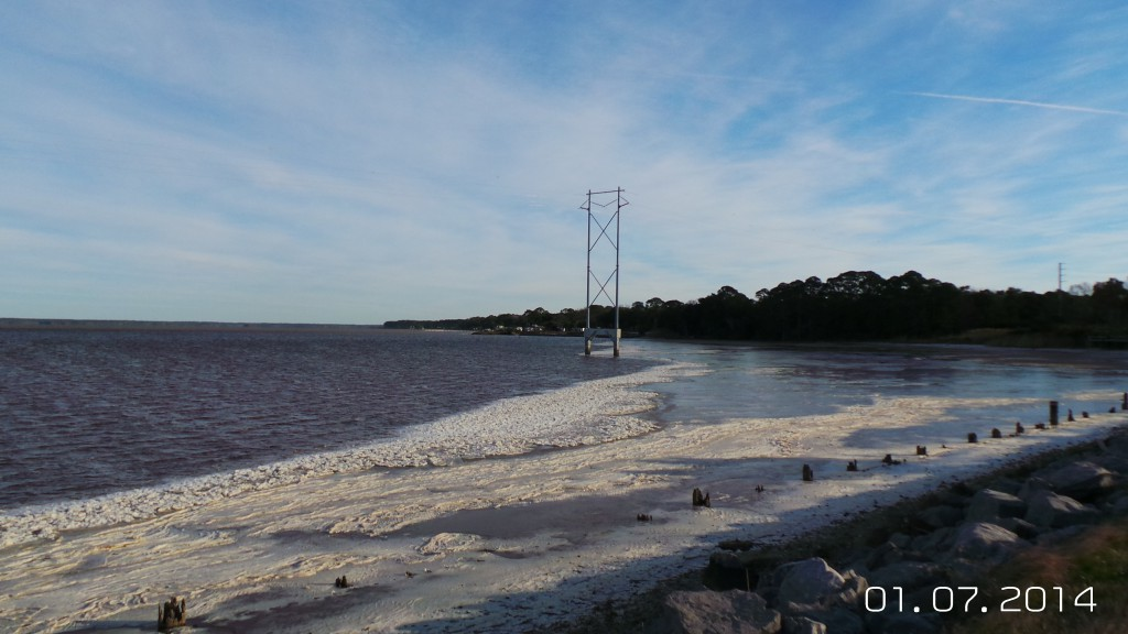 Recent ice coverage in Apalachicola Bay is visible example of the harsh environmental conditions that have led to reported fish kills throughout Florida including the Panhandle. Photo by L. Scott Jackson
