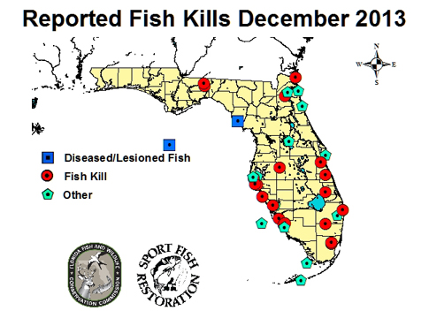 Above is an example of the December 2013 reported fish kill map: http://myfwc.com/research/saltwater/health/reported-fish-kills-abnormalities/gallery/2013-december