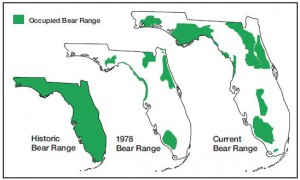 bear ranges
