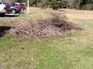 Brush piles such as these attract snakes.  These should be kept away from where family members play.  They can actually be used to move snakes away from areas where you do not want them.  Photo: Rick O'Connor