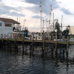 The Status of Commercial Fishing and Aquaculture in the U.S. and Florida