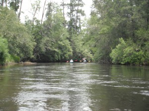 Canoeing in Perdido River Photo credit: Carrie Stevenson
