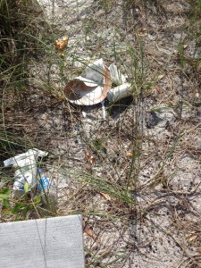 Trash left behind by those enjoying the beach.  Photo: Rick O'Connor