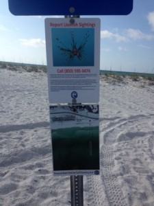 This county sign marks a public snorkel reef and also educates everyone about lionfish.  Photo: Rick O'Connor