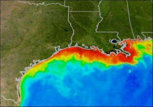 The red area indicates where dissolved oxygen levels are low.