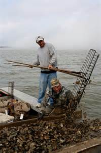 Oysterman on Apalachicola Bay. Photo: Sea Grant