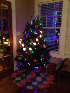 There is nothing like Christmas lights on a tree.   Photo: Molly O'Connor