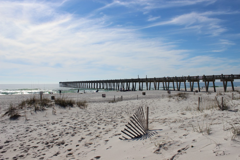 Nature tourism in the panhandle intracoastal waterway for Pensacola beach fishing pier