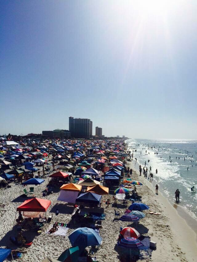 The Changing Climate; Part 4 (the Florida Panhandle)
