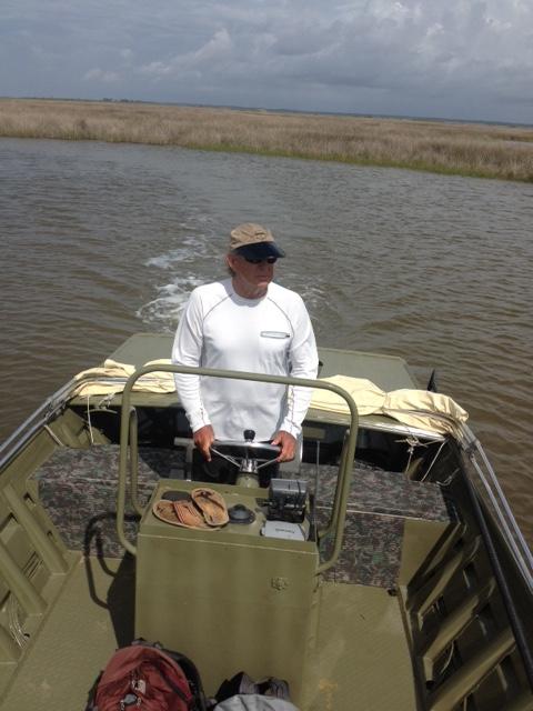 Searching for Diamondback Terrapins in Alabama