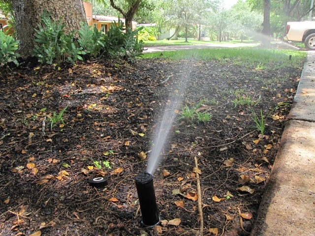 Water conservation crucial under current drought conditions in Florida