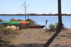 The state park provides kayaks for exploring the dune lake at Topsail. It can be reached by hiking or a tram they provide.