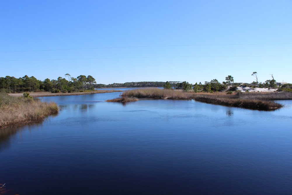 Nature Tourism in the Panhandle – the Intracoastal Waterway (ICW) – 30A in Walton County
