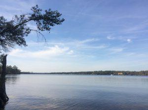 Rocky Bayou Aquatic Preserve - Niceville, Florida