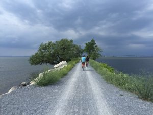 The causeway over Malletts Bay includes a bike ferry, one of the few in the country. Photo credit, Carrie Stevenson