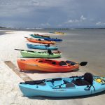 Ecotourism in Northwest Florida