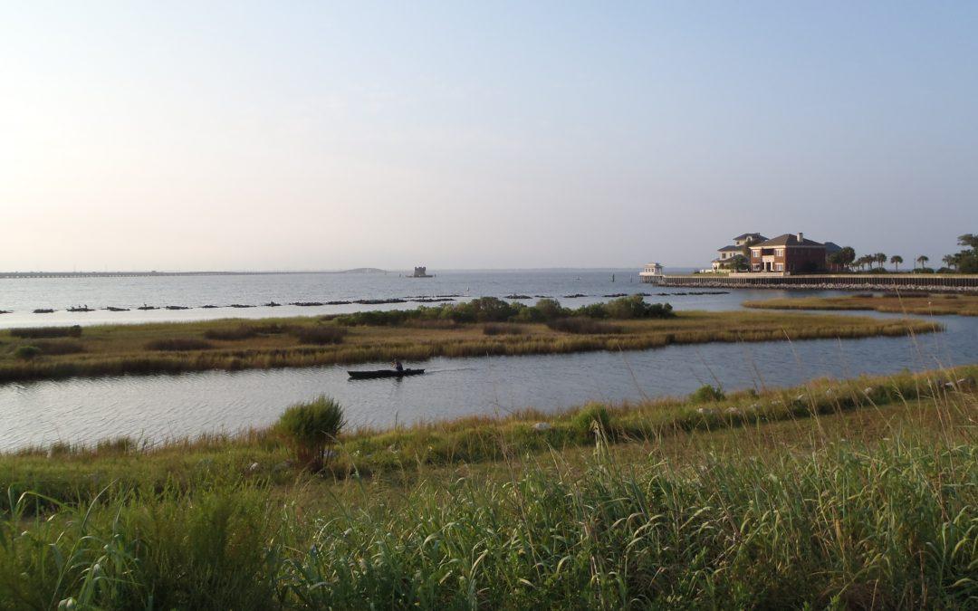 The Benefits of a Living Shoreline