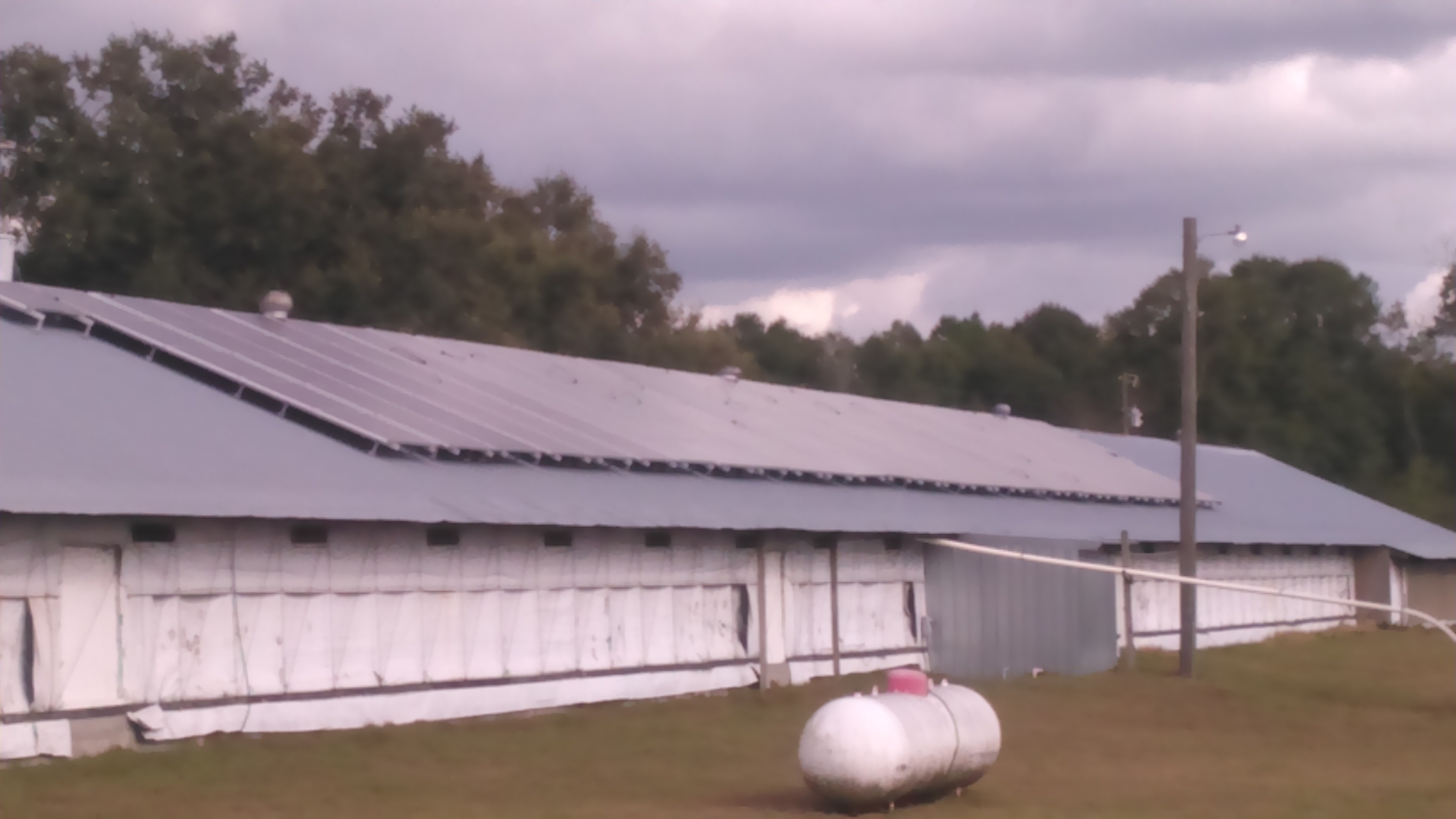 Maximize Your Farm S Energy Savings With Fdacs Free