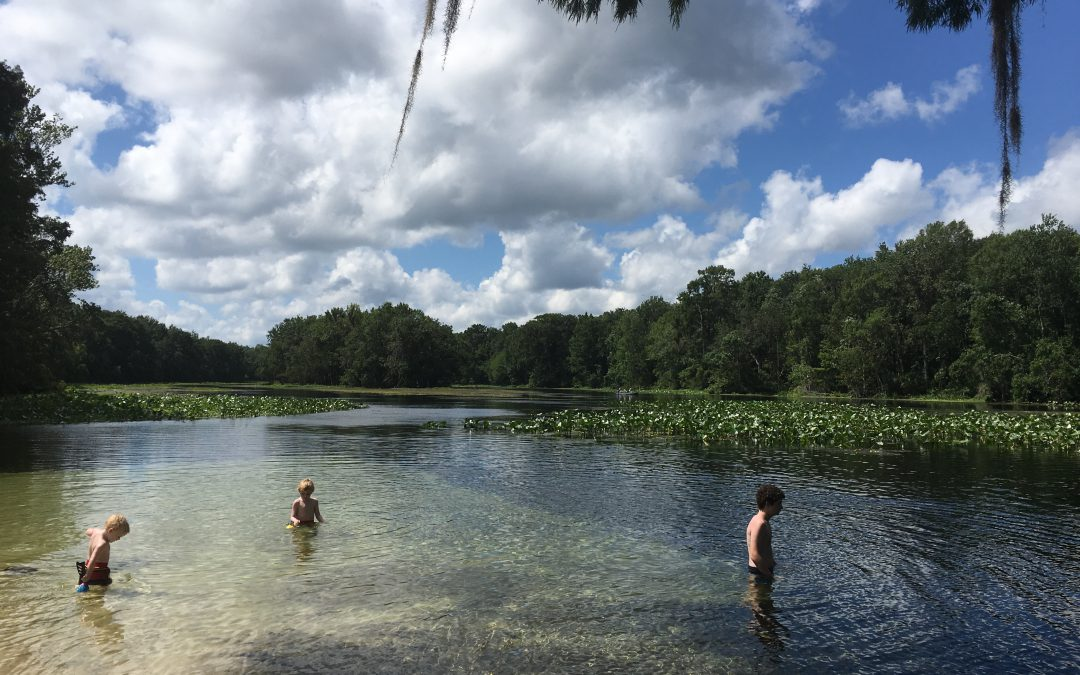 The Wacissa River: Clear and Wild