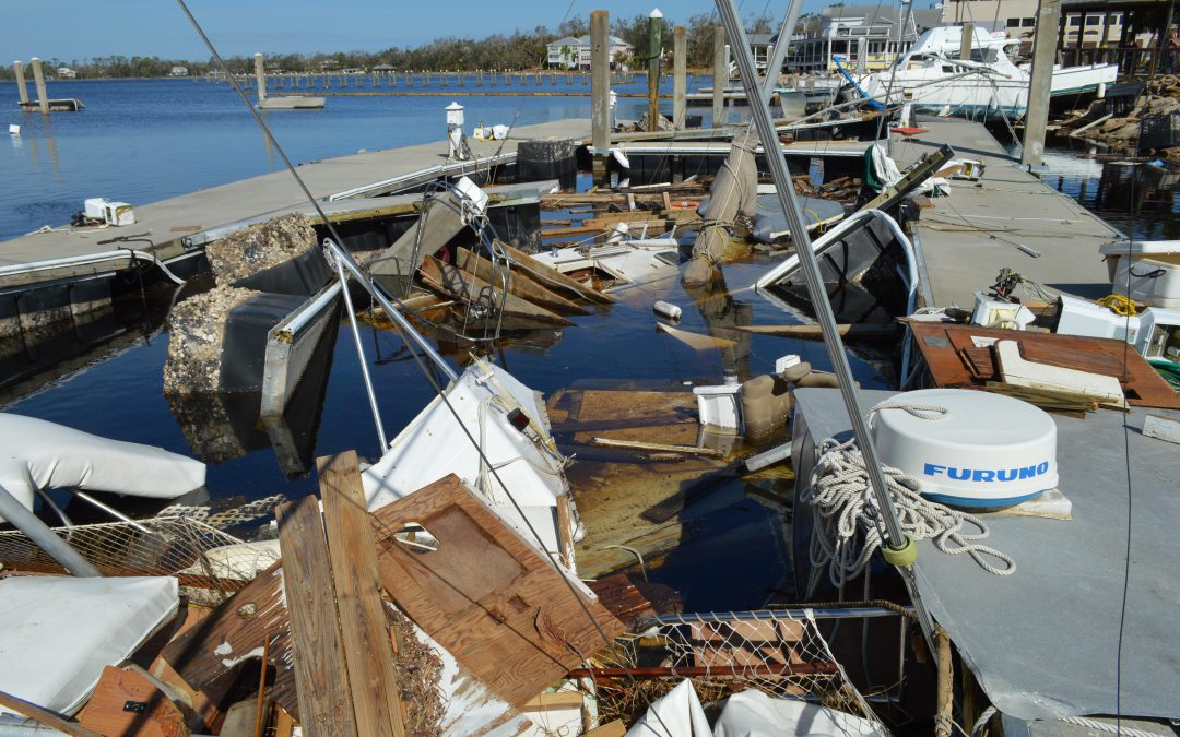 Declaration of Fishery Resource Disaster Update for Hurricane Michael (as of November 23, 2018)