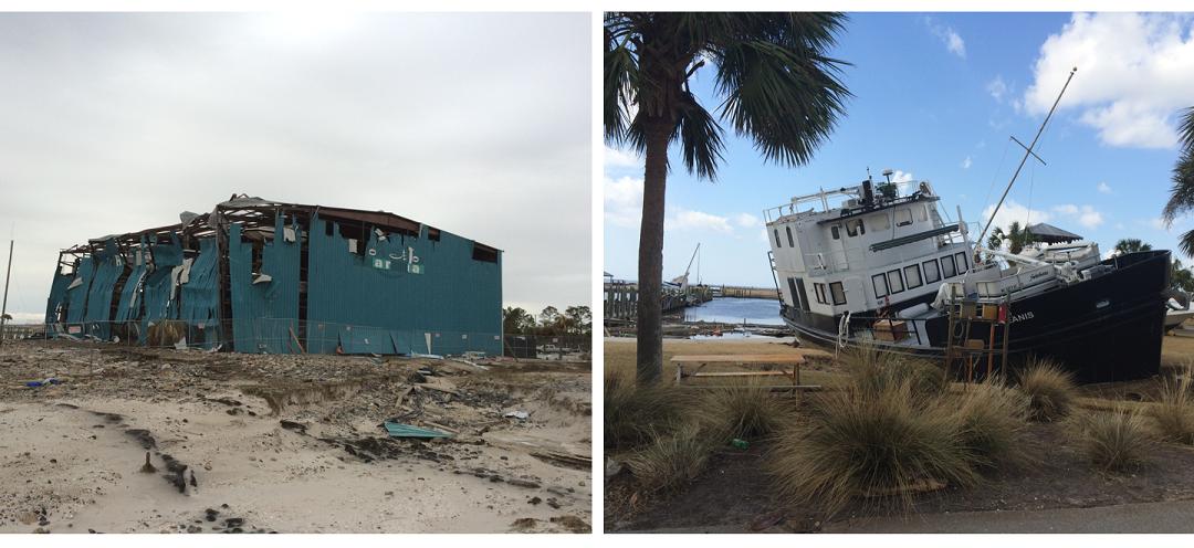 Hurricane Michael Devastates Regional Seafood Industry