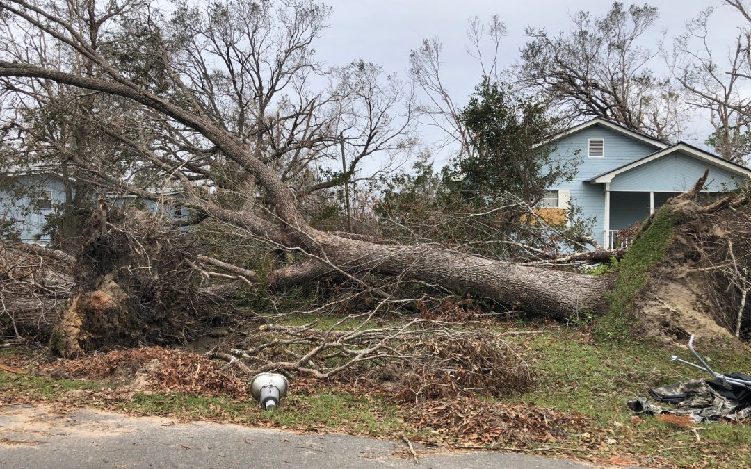 Preparing for Hurricane Season—Ten Tips to protect your home and family