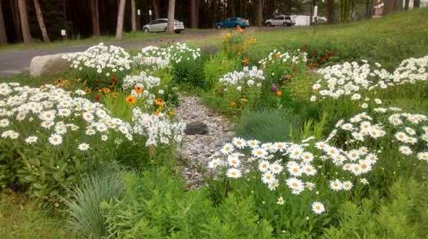 Green Infrastructure can Reduce Flooding and Improve Water Quality in the Florida Panhandle