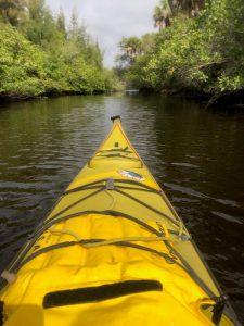 Kayak POL