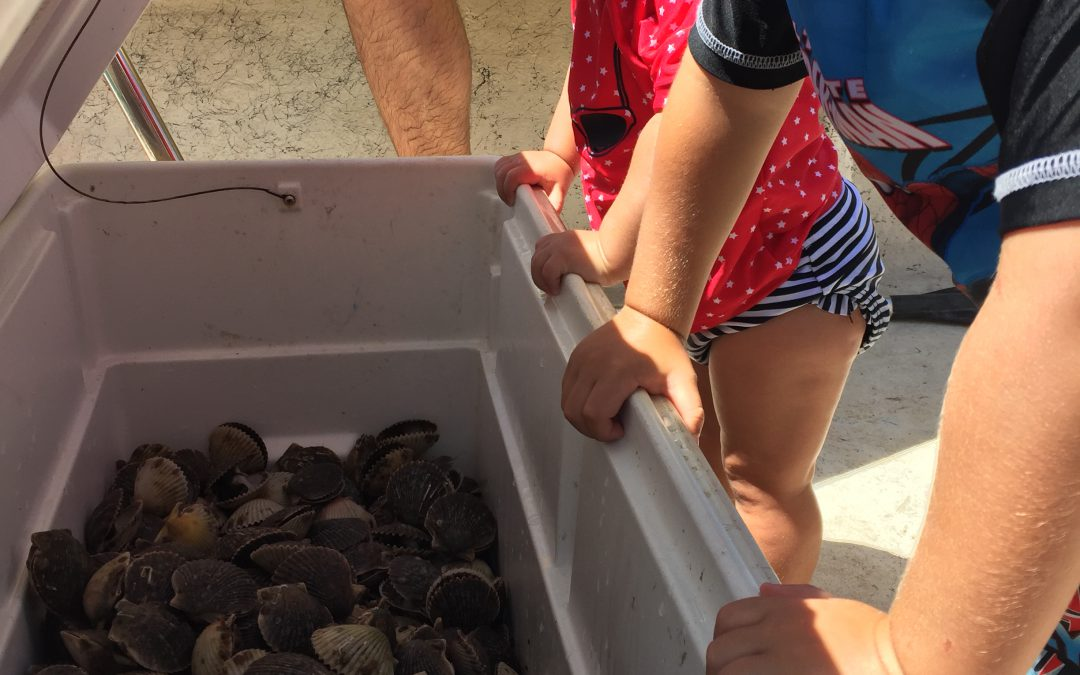 Summer Tis the Season for Sensational Seafood