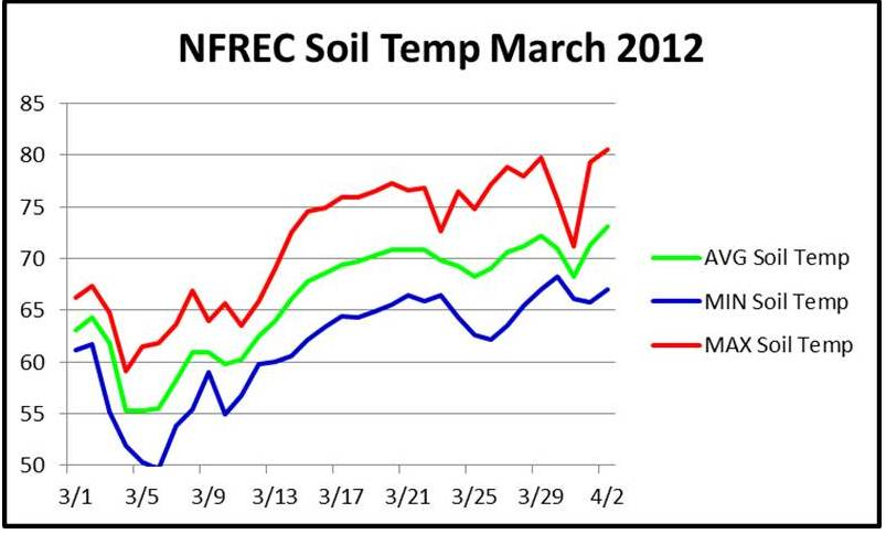 Drought forecast suggests early peanut planting this year for Soil temperature