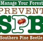 Apply for the Southern Pine Beetle Prevention Program through July 31