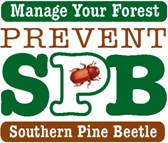 Pine Beetle logo