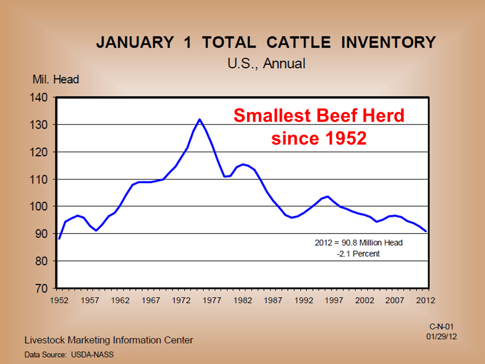 U S Cattle Inventory Smallest US cattle inv...
