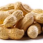 SW Alabama Peanut Production Meeting February 26
