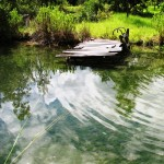 Pond Management Techniques Workshop May 27