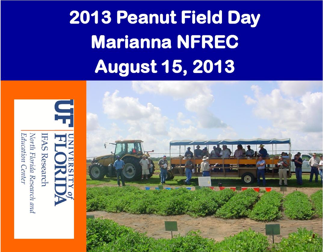 13 Peanut Field Day